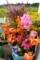 軽トラ荷台の「盆花」。(29.8.12)