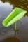 9本目の「花茎・蕾」を発見…。(29.8.22)