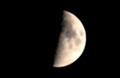 「七月八日」の月は、」「上弦」のお月さま。(29.8.29)(18:44)