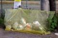 ネットによる、鳥獣による食害防止。(29.9.4)