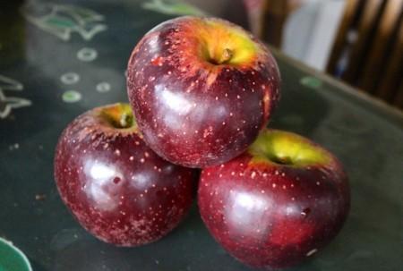 今が旬、「秋映りんご」。(29.10.14)