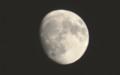 「十三夜」の名月。(29.11.1)(17:14)