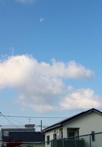 西空高く残る、「九月二十日」のお月さま。(29.11.9)(9:33)