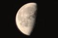 頭上に、昨夜・「九月十一日」のお月さま。(29.11.10)(5:46)