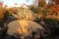 「カンナ球根」に、もみ殻をかぶせ冬越し準備。(29.11.10)