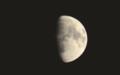東の空高く、「十月十一日」のお月さま。(29.11.28)(17:17)