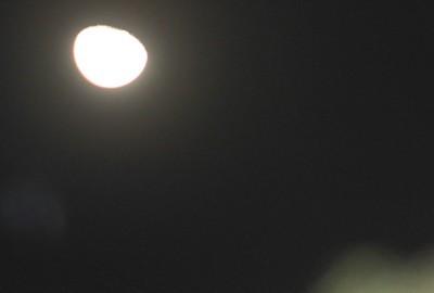 昨夜遅く、東の空高く「十月二十日」のお月さま。(29.12.7))(23:52)