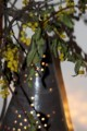 玄関の常夜灯、カバーに挿した「ホザキヤドリギ」。(29.12.11)
