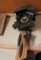 「ぽっぽ時計」の錘…。(29.12.13)