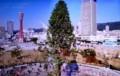神戸に運ばれた「アスナロ(明日桧)」の大木。(29.12)