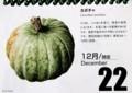 『北海道花暦』・カボチャ(29.12.22)
