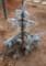 「コロラド・トウヒ・ホプシー」の植栽。(29.12.24)