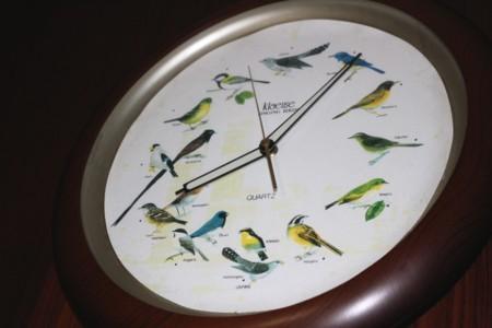 野鳥の鳴き声が流れる、掛け時計。(30.1.9)