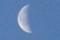 「霜月二十三夜」・「下弦の月」。(30.1.10)(7:40)