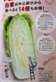 白菜のお得な食べ方(30.1.20)