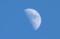 「真冬日」の空に昇った、「上弦の月」。(30.1.25)(15:16)