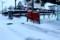 「上雪(かみゆき)」、雪掻きを終えて。(30.2.2)
