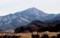東方正面に、佐久穂町シンボルの「茂来山」。(30.2.16)
