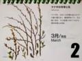 『北海道 花暦』(30.3.2)