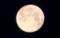 「正月十五日」・有明月。(30.3.3)6:06)
