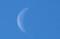 朝の白いお月さま。(30.3.12)(8:09)