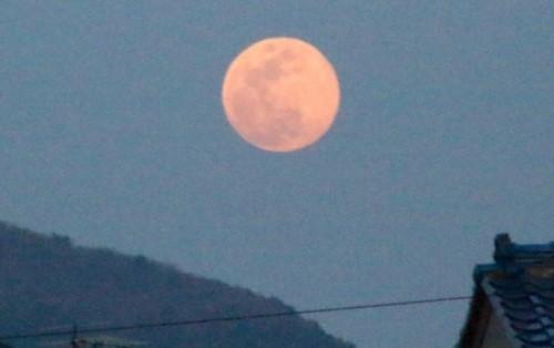 「如月・望月」のお月さま。(30.3.31)(18:19)