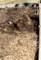 「ハス田・ビオトープ」、水を張る前の最終作業。(30.4.1)