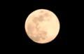 「弥生三月十五夜」・満月。(30.4.29)(19:02)