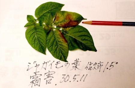 f:id:yatsugatake:20180511193707j:image