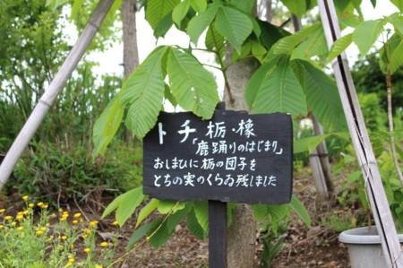 f:id:yatsugatake:20180512105210j:image