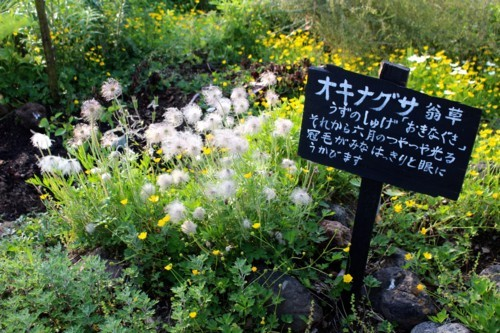 f:id:yatsugatake:20180527170601j:image