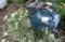 枝・葉を、シュレッダー掛け、堆肥に…。(30.6.30)