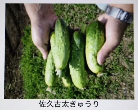 f:id:yatsugatake:20180710090932j:image