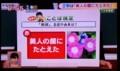 テレビ・「朝顔の名の浦井は?」(30.8.7)