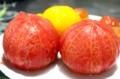 トマトを湯剥きして「トマト丼」に…。(30.8.9)