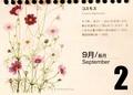 『北海道 花暦』より「コスモス」。(30.9.2)