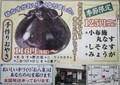 「小布施・丸なす・おやき」の広告(30.9.14)