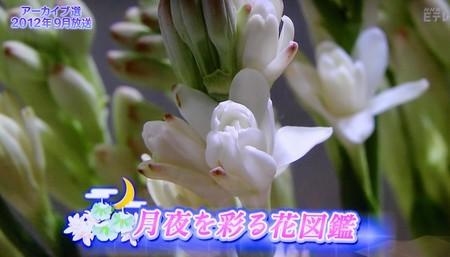 f:id:yatsugatake:20180923083846j:image