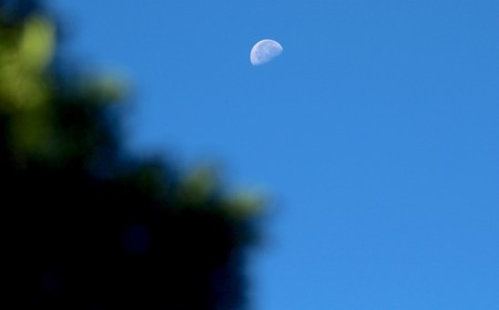 快晴の西空赤く、「昨夜・八月二十一日」のお月さま。(30.10.1)(8:22)