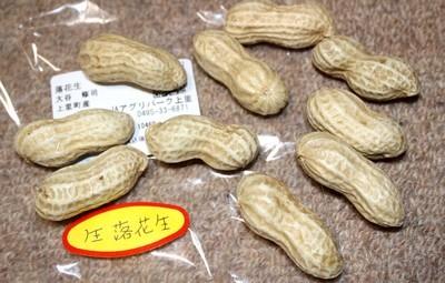 上里アグリパークで買った「生 落花生」(30.10.11)