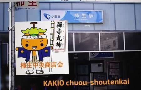 テレビで、「禅寺丸」を宣伝。(30.10.20)