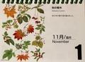 『北海道 花暦』、11月1日は「秋の樹木」