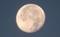 朝、上下逆になった、昨夜・十七日の月。(30.11.25)(6:45)