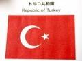 「月と星」を配した、トルコ国旗(30.12.3)