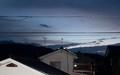 東の空に、黒い雲が棚引いて…。(30.12.6)(6:22)