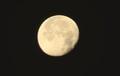 西空に残った、「昨夜・十八日」のお月さま。(30.12.25)(6:16)