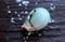 犠牲になった「ムクドリ(椋鳥)」の卵?(30.12.26)