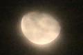 雲を透かして、「霜月二十日」のお月さま。(30.12.26)(21:16)