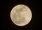 今夜・「十六夜」真ん丸お月さま。([31.1.21)(18;38)