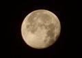 西空に、上下逆転の「臘月・十七日」の落お月さま。(31.1.23)(6:25)